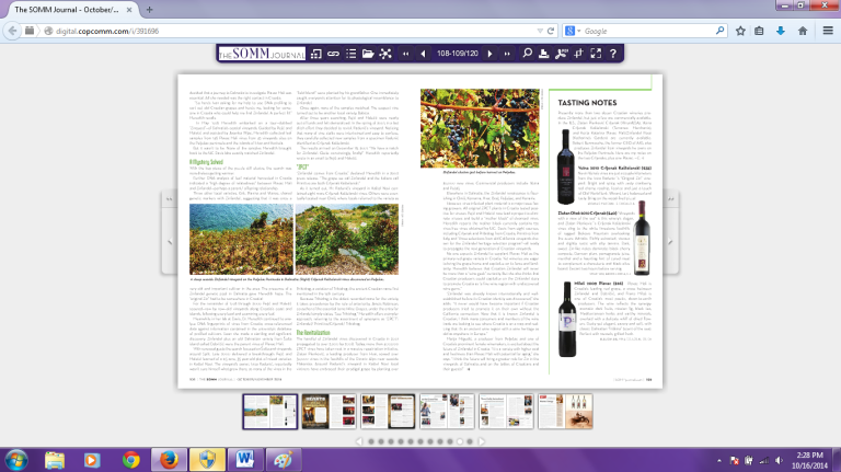 SOMM Journal_article2